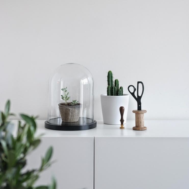 Sort-hvitt_interiør_glasskuppel_Åhléns_kaktus_plantasjen_vår_hay_saks_oliventre